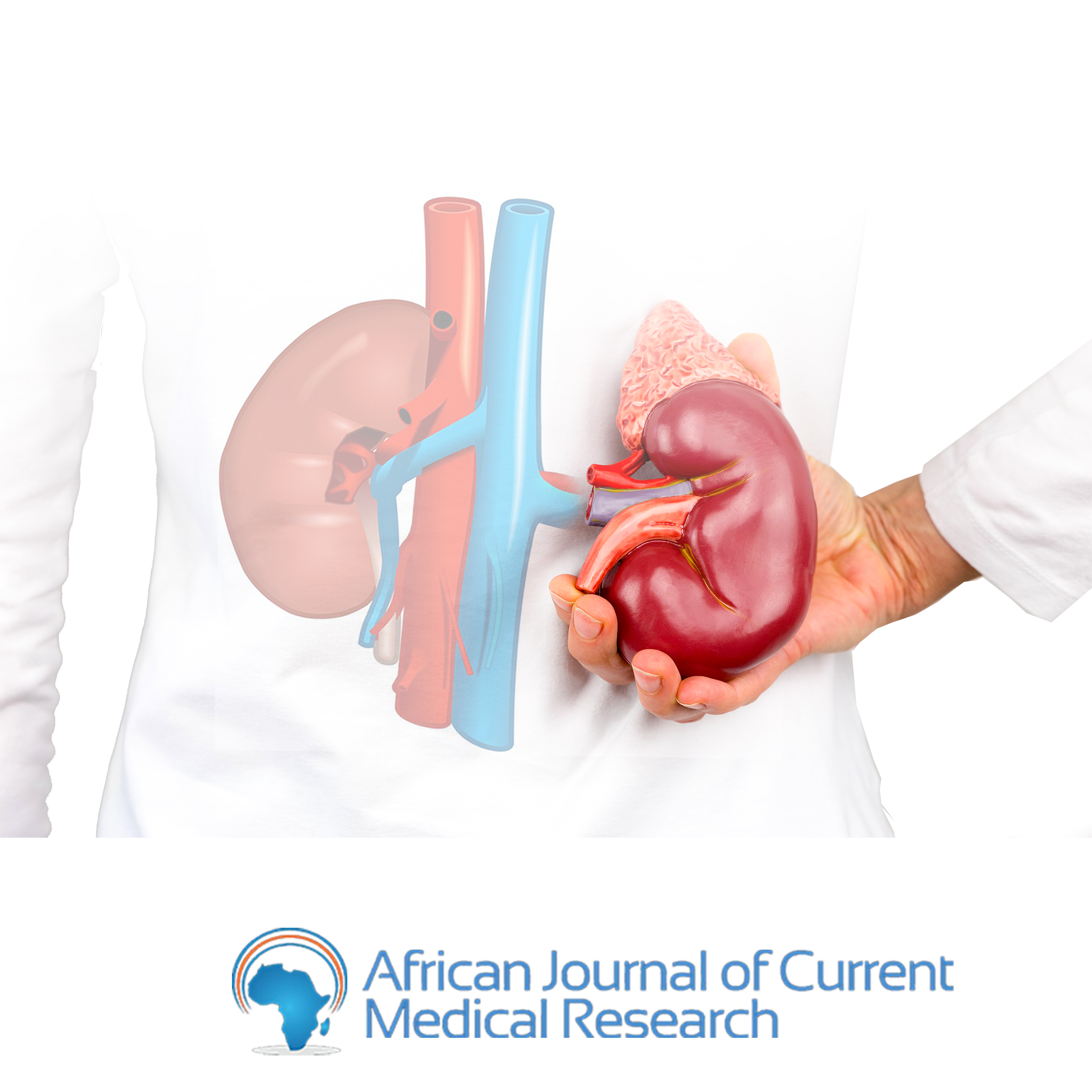 A 10-Year retrospective review of renal cases seen in a Tertiary Hospital in West Africa.
